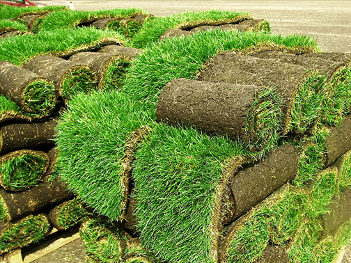 Turf laying services